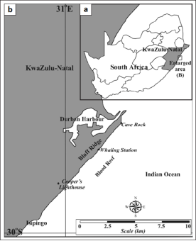 FIGURE 1: (a) Regional context of the locality of the study area. (b) Enlarged area of interest in the vicinity of Durban. The study area lies on the seaward margin of the Durban Bluff, central KwaZulu-Natal. The Bluff Ridge, Isipingo and the whaling station are indicated.