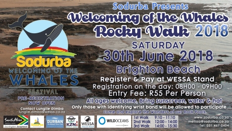 WELCOMING OF THE WHALES ROCKY POOLS 2018