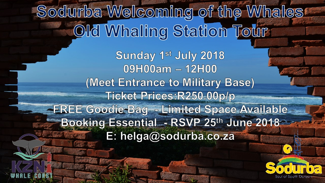 Invite Sunday Whaling Station Tour